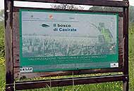 Il bosco di Casirate