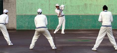 I ragazzi dell'Albano Cricket Club in allenamento