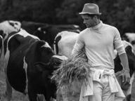 Elia Cometti, l'ex muratore nell'Olimpo della moda grazie alla fattoria dello zio (a Gandosso)