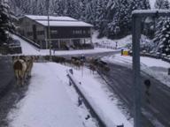La prima neve sulle montagne bergamasche