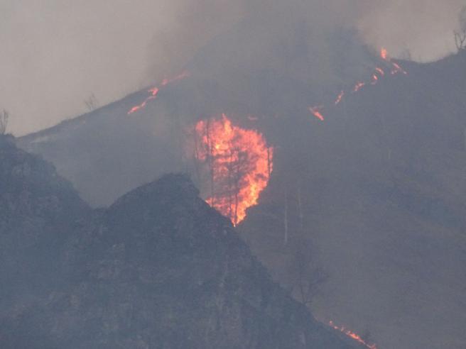 Bergamo,  incendio in Val Seriana Torna l'incubo dei piromani Foto